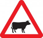 warning-sign-cattle
